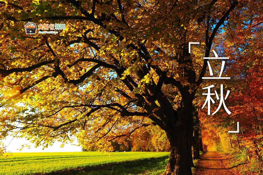 【立秋養生】吳明珠中醫師:慎防秋老虎!飲食宜養陰潤燥、補肺氣