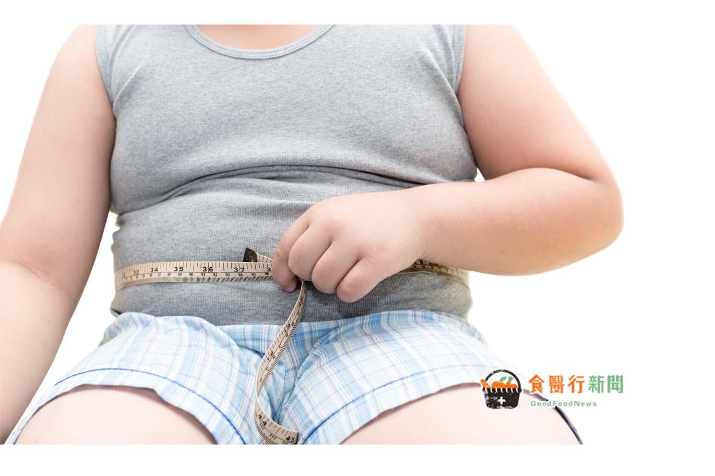 孩子過胖怎麼辦?掌握6祕訣 吃得營養健康瘦