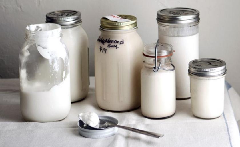 乳糖不耐症患者也能吃!多吃發酵乳保腸道健康!